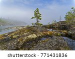 the shores of lake ladoga in a... | Shutterstock . vector #771431836