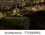 Mossy Beams Of A Wooden Bridge...
