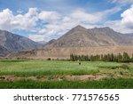 green field and mountain... | Shutterstock . vector #771576565