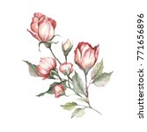 the image of a rose.hand draw... | Shutterstock . vector #771656896