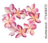 pink plumeria wreath. heart... | Shutterstock . vector #771658372