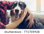 Stock photo young person with dog at home leisure 771705928