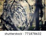barbed wire captivity prison... | Shutterstock . vector #771878632