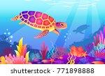 turtles swimming in the ocean.... | Shutterstock .eps vector #771898888