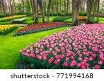 Amazing Spring Landscape ...