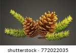 pine cones with branches on... | Shutterstock .eps vector #772022035