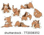 set of vector cartoon...   Shutterstock .eps vector #772038352