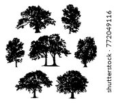 tree collection vector... | Shutterstock .eps vector #772049116