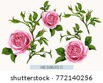 beautiful  vector floral summer ... | Shutterstock .eps vector #772140256