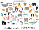 Stock vector big collection of wild jungle savannah and forest animals birds marine mammals fish set of 772178905