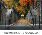 autumn park with road scenic ... | Shutterstock . vector #772203262