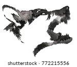 black and white monochrome... | Shutterstock . vector #772215556
