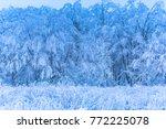 fresh snow in the carpathian... | Shutterstock . vector #772225078