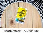 chainat province  thailand ... | Shutterstock . vector #772234732