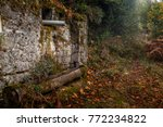 old stone built lodge deep in... | Shutterstock . vector #772234822