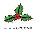 hand drawn colored holly or... | Shutterstock .eps vector #772255492