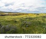 carrizo plain national monument ...   Shutterstock . vector #772320082