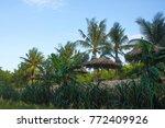 beautiful nature background | Shutterstock . vector #772409926