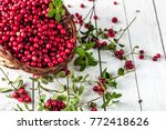 basket of fresh cranberry on... | Shutterstock . vector #772418626