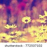 vintage white flowers | Shutterstock . vector #772537102
