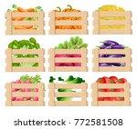 set of wooden box for... | Shutterstock .eps vector #772581508