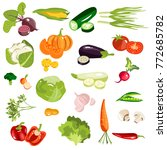 set of fruits and vegetables.   Shutterstock .eps vector #772685782