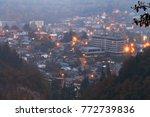 borjomi  samtskhe javakheti ... | Shutterstock . vector #772739836