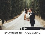 wind blows bride's veil while... | Shutterstock . vector #772766542