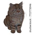 Stock vector happy kitten drawing kitten white background happy art 772773046