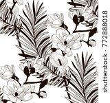 vector black decorative... | Shutterstock .eps vector #772888018