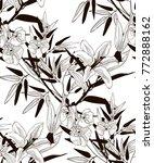 vector black decorative... | Shutterstock .eps vector #772888162