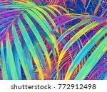 Tropical Palm Leaf Texture...