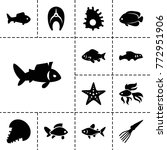 aquatic icons. set of 13... | Shutterstock .eps vector #772951906