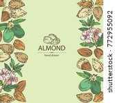 background with almond  almond...   Shutterstock .eps vector #772955092