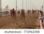 camel race in dubai | Shutterstock . vector #772962358