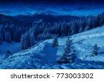 carpathian mountains in light... | Shutterstock . vector #773003302