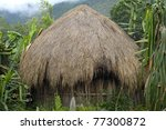 A Traditional Hut In An ...