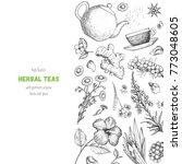 tea shop vector illustration.... | Shutterstock .eps vector #773048605