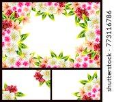 vintage delicate invitation... | Shutterstock . vector #773116786