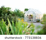 glass greenhouse view | Shutterstock . vector #773138836