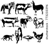 vector flat illustration of... | Shutterstock .eps vector #773233396
