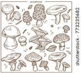 edible mushrooms sketch vector