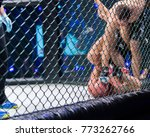 Small photo of MMA Boxers fighters fight in fights without rules in the ring octagons