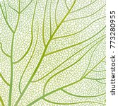 background texture leaf. vector ... | Shutterstock .eps vector #773280955