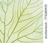 background texture leaf. vector ... | Shutterstock .eps vector #773280955