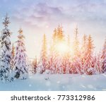 mysterious winter landscape... | Shutterstock . vector #773312986