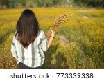 woman holds the dried flowers... | Shutterstock . vector #773339338