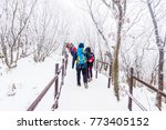 hiking in the winter with... | Shutterstock . vector #773405152