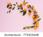 composition of small tangerines ... | Shutterstock . vector #773425648