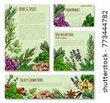 herb  spice and natural... | Shutterstock .eps vector #773444782